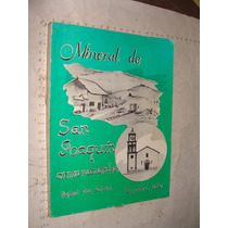 Libro Mineral De San Joaquin , Mis Recuerdos , Rafael Roa T