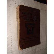 Libro Tratado De Dibujo De La Figura Humana , Victor Perard
