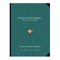 Flowers Of The Engadine: Drawn, Evelyn Dawsonne Heathcote