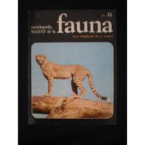 Enciclopedia Salvat De La Fauna-felix Rodriguez. 11