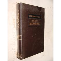 Libro Teoria Economica , Sergio Dominguez Vargas , Año 1982