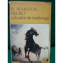 Salvador De Madariaga, El Semental Negro.