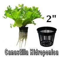 Canastilla Hidroponica 2 , Hidroponia Invernaderos Macetas