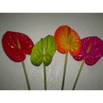 Flores Exoticas Anturios Artificiales