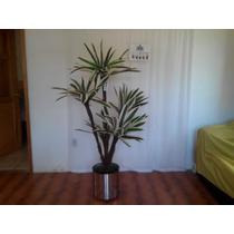 Plantas En Maceta Yuca Artificial Mn4