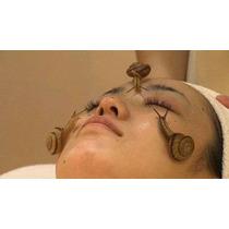 Caracol Pie De Cria Reproductor Tratamiento Belleza Baba