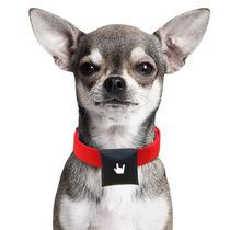 Localizador Para Perros Puppy Beluvv (mejor Que Gps)