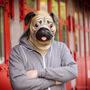 Mascara De Perro Pug 100% Original Archie Mcphee Broma Ideal