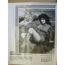 Irma Serrano La Tigresa Sexy Foto Blanco Y Negro 1972
