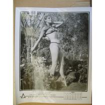 Jacqueline Andere En Bikini Sexy Foto Blanco Y Negro 1970