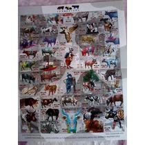 Estampillas De Correos Vacas Cow Parade Df