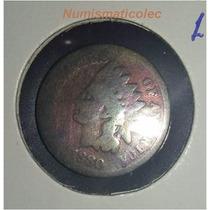 Moneda Centavo Cabeza De Indio 1880 Indian Head