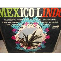 Angeles Del Señor Mexico Lindo Lp Vinilo Disco De Acetato