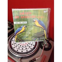 Coma Dj - Sones Huastecos Adultos , Acetato - Vinyl - Lp