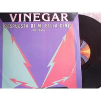 Vinegar - Get Busy - Respuesta De Mi Bella Genio -