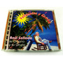 Raul Collado / Vallenatos Y Cumbia Cd Raro 1996 Semi-nuevo