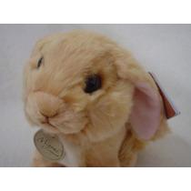 Conejo Mini Lop Eared Miyoni Aurora Calidad Nuevo Foto Real