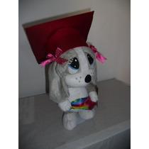 Sam O Sad Graduacion Promocion $540.00vrn Envio Gratis