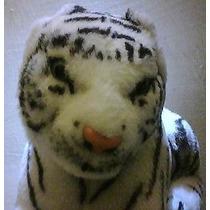 Tigre Blanco Ruge De Pilas