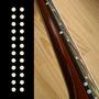 Calcomanias Para Trastes Bajo O Guitarra. Perlas (costado)