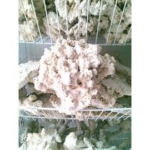 Roca Base Importada, Pukani Porosa (pukani) Precio Por Kilo