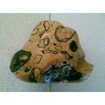 Rocas Africanas Para Decoración Leopard Skin