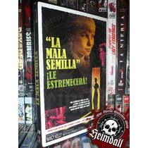 Dvd Bad Seed Mala Semilla Dvd + Slipcase R2 Horror Terror