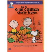 Es La Gran Calabaza Charlie Brown Dvd