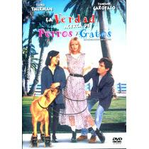 Dvd La Verdad Acerca De Perros Y Gatos ( The Truth About Cat
