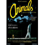 Animals ( Animales ) Dvd Tematica Gay