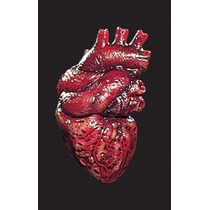 Body Parts Simulados ~ Corazón 1 / Paquete Paquete / 1