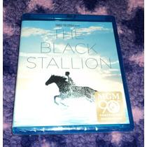 The Black Stallion - El Corcel Negro - Bluray Importado 1979