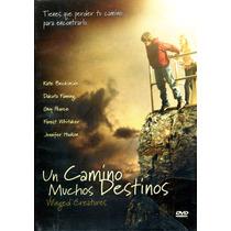 Dvd Un Camino Muchos Destinos ( Winged Creatures ) 2008 - Ro