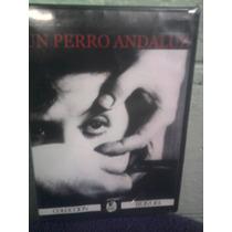 Dvd Cine De Arte Perro Andaluz Luis Buñuel