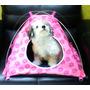 Accesorios Para Perros ( Casas De Campaña )