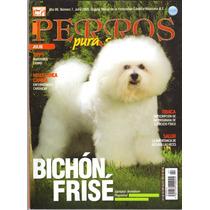 Revista De Perros Pura Sangre El Bichón Frisé De Julio 2009
