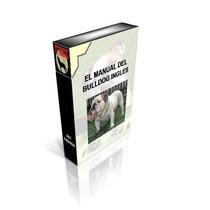 El Manual Del Bulldog Ingles Conoce A Tu Cacheton ! Omm