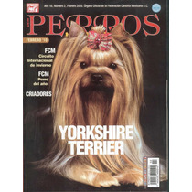Revista Perros Pura Sangre El Yorkshire Terrier Feb 2010