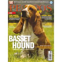 Revista De Perros Baset Hound Febrero 2013