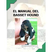 Manual Del Basset Hound + Regalos Conoce Y Educa A Tu Orejon