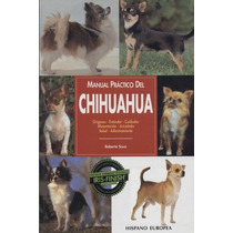Perros Chihuahua - Cuidados Alimentación Orígenes Salud