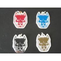 Identificacion Para Perro Diseños 2012 Mdn