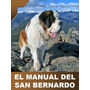San Bernardo Conoce A Tu Perro + Regalos Para Adiestrarlo ¡¡