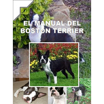 Manual Del Boston Terrier Mas Regalos Conoce A Tu Amigo Au1