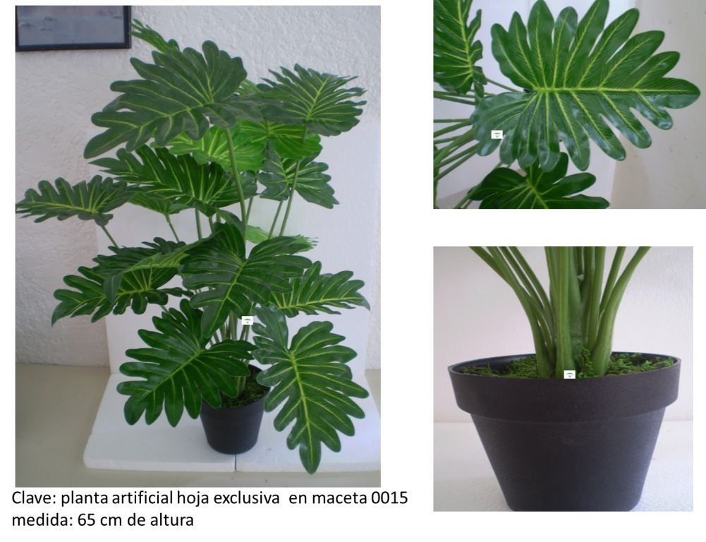 Plantas artificiales related keywords suggestions - Plantas artificiales decorativas ...