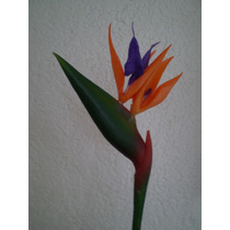 Ave Del Paraiso Artificial Flor Bfn