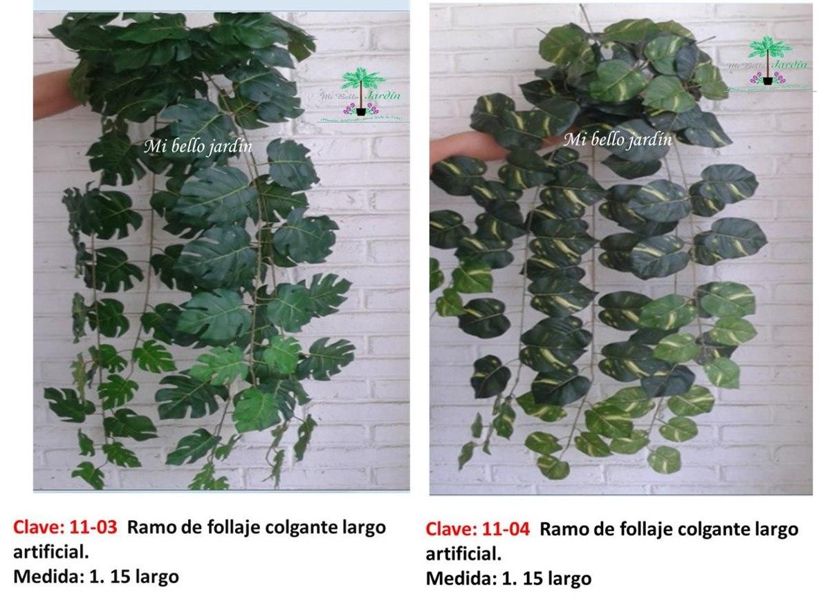 Plantas Colgantes De Hojas Elegantes Vbf  $ 1,53000 en MercadoLibre