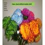 Orquideas Y Flores Bfn