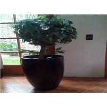 Planta Topiario Artificial
