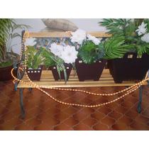 Plantas Y Macetas Decorativas Sp0